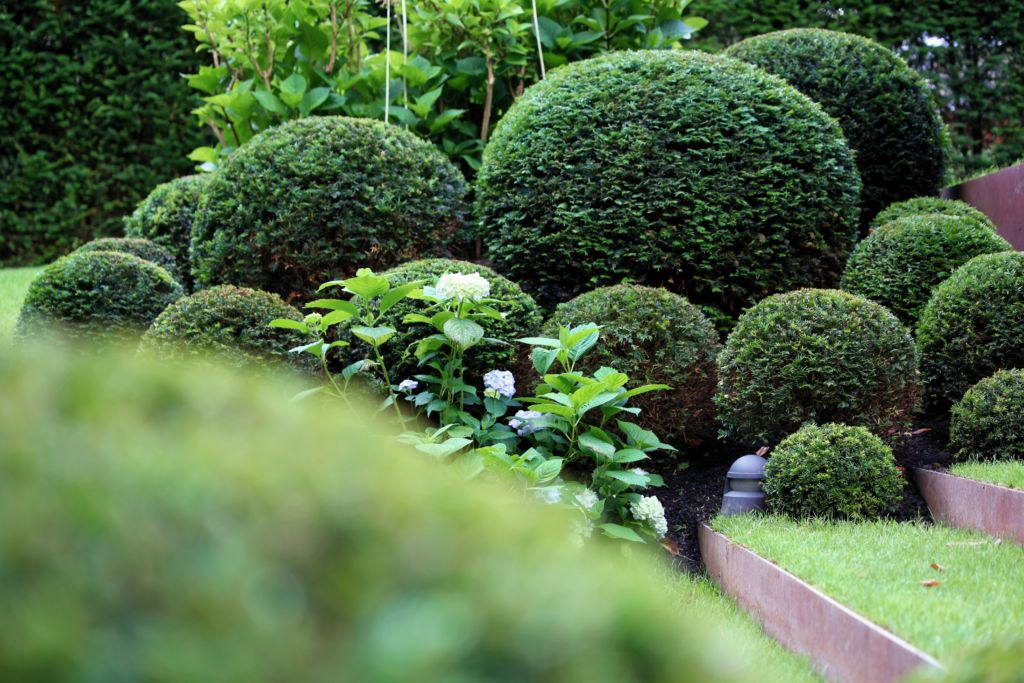 Villa im Waldpark